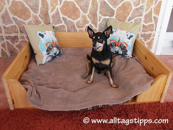 grosses hundebett aus holz selber gemacht alltagstipps. Black Bedroom Furniture Sets. Home Design Ideas